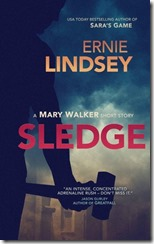 fff19-cover-sledge