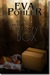 fff21-cover-themysterybox