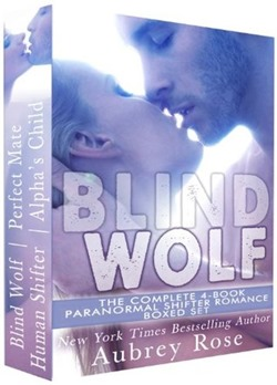 review-cover-blindwolf