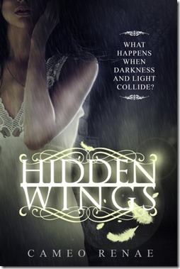review-cover-hidden wings