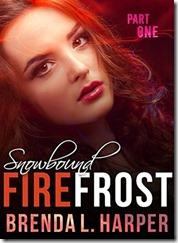 FFF29-cover-snowbound