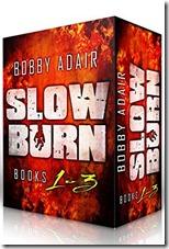 bargain-slow burn box set
