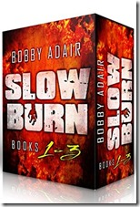 bargain-slow burn box set