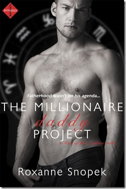 review-cover-the millionaire daddy project