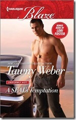 review-cover-a seal's temptation
