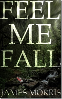 review-cover-feel me fall
