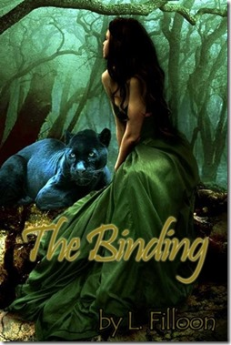 cover-review-the binding